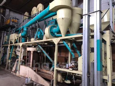 Мукомольный завод за 177 млн 〒 в Ахмете — фото 2