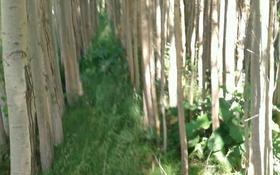 Дача с участком в 25 сот. помесячно, ул. Кунгей 20а — Дангарашал за 120 000 〒 в Ленгере